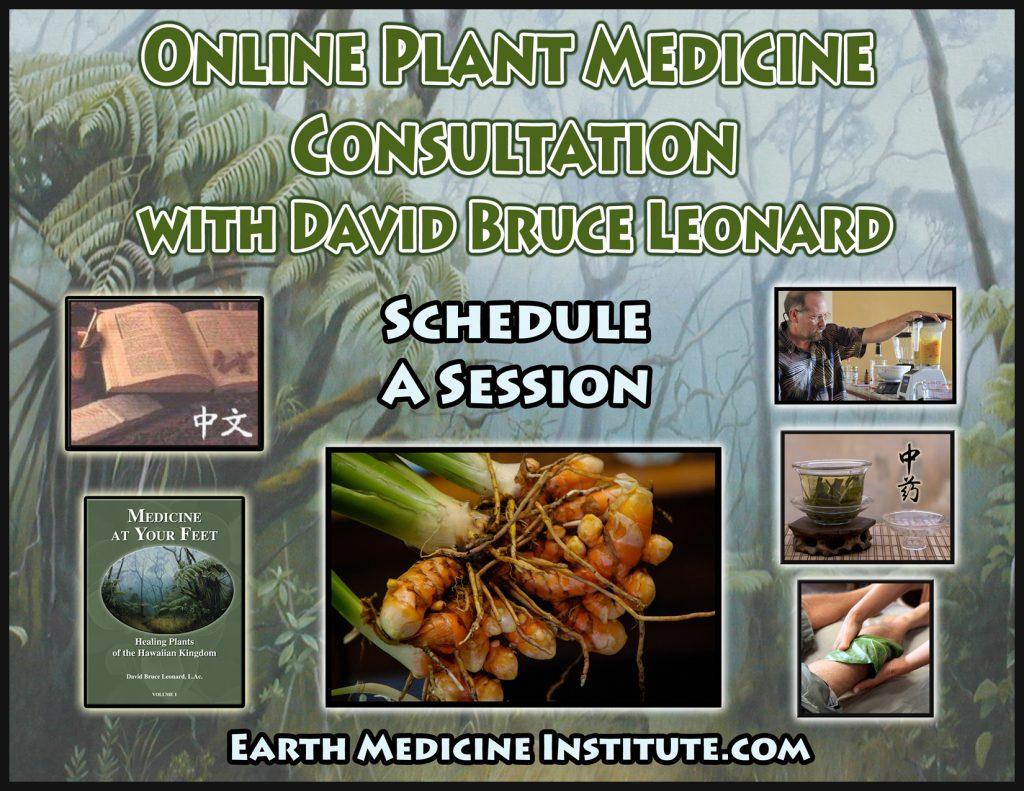 OnlinePlantMedicineConsultation02