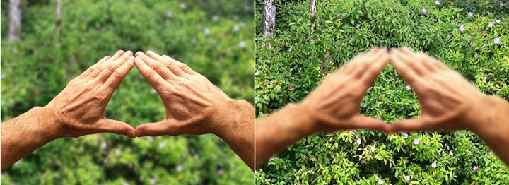 Qigong Hands Eye Training